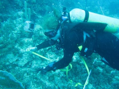 Billy Lake - Laura measures coral